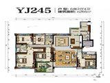 碧桂园太阳城_6室2厅4卫 建面265平米